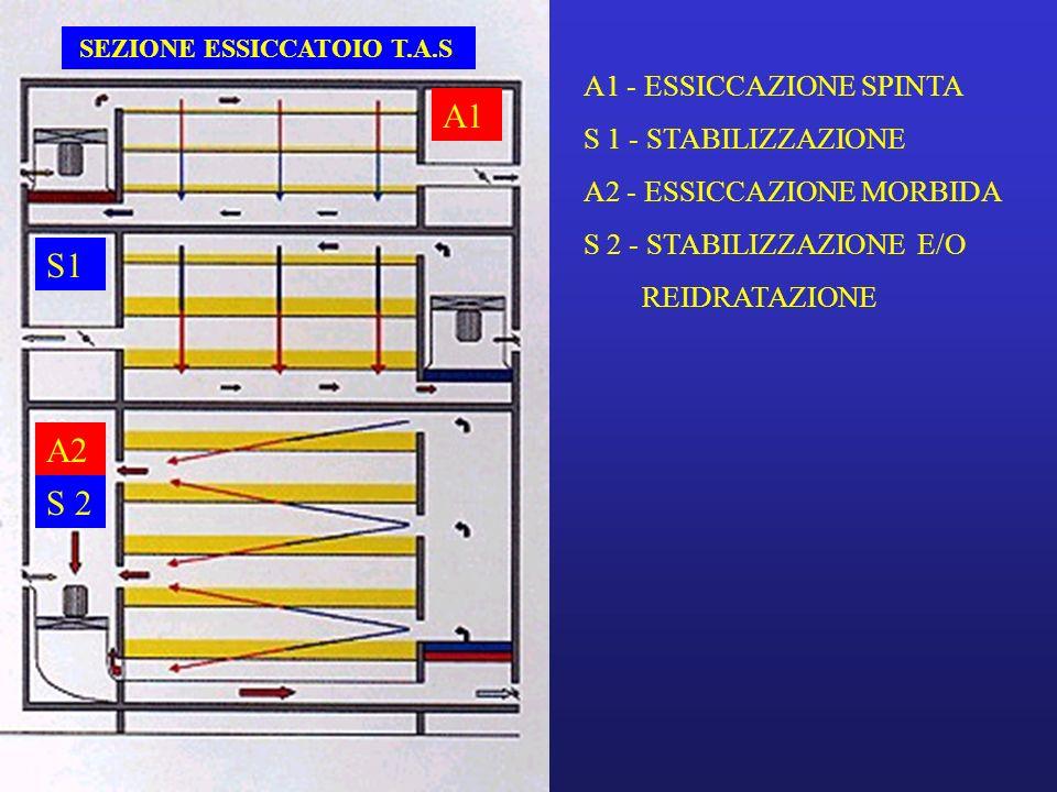 A1 S1 A2 S 2 SEZIONE ESSICCATOIO T.A.S. A1 - ESSICCAZIONE SPINTA S 1 - STABILIZZAZIONE A2 - ESSICCAZIONE MORBIDA S 2 - STABILIZZAZIONE E/O REIDRATAZIO