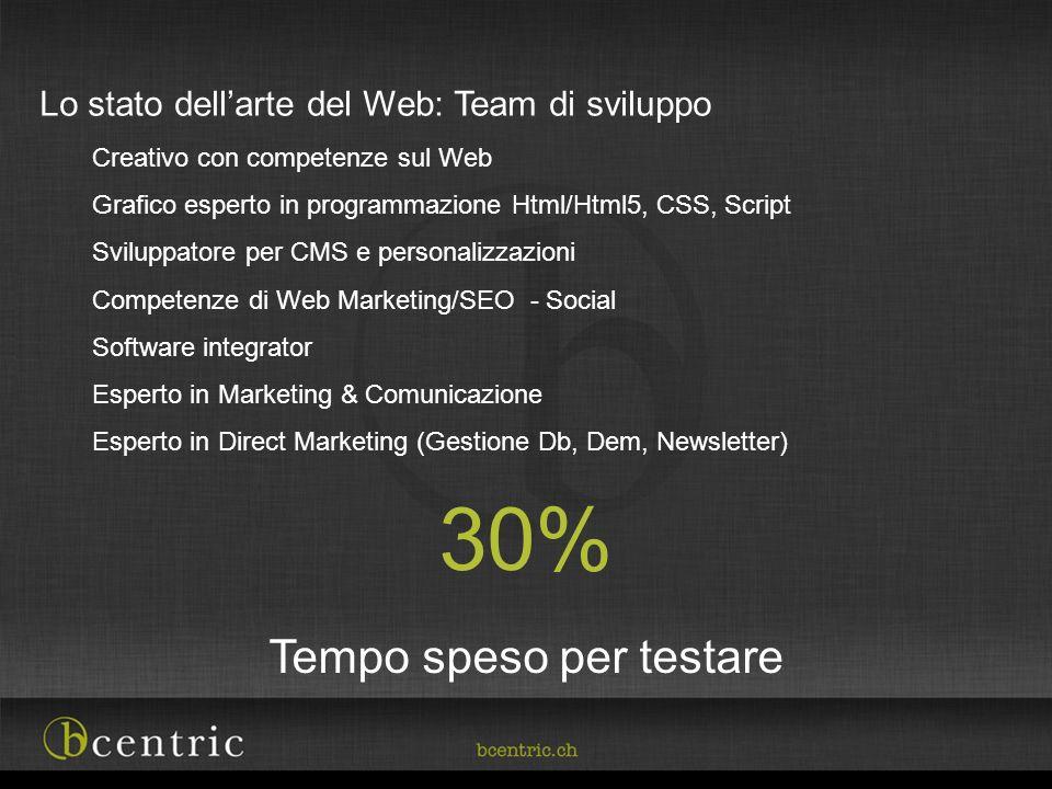 Lo stato dellarte del Web: Team di sviluppo Creativo con competenze sul Web Grafico esperto in programmazione Html/Html5, CSS, Script Sviluppatore per