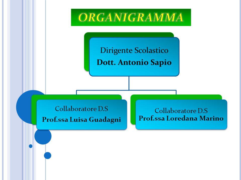 Dirigente Scolastico Dott. Antonio Sapio Collaboratore D.S Prof.ssa Luisa Guadagni Collaboratore D.S Prof.ssa Loredana Marino