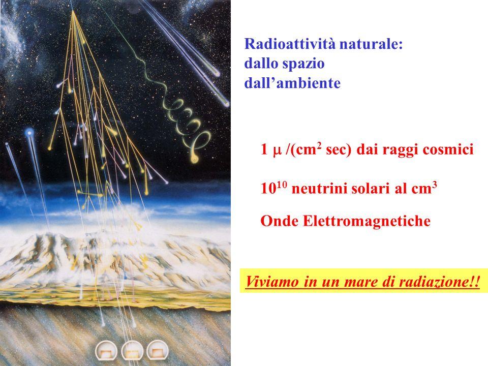 Radioattività naturale: dallo spazio dallambiente 1 /(cm 2 sec) dai raggi cosmici 10 10 neutrini solari al cm 3 Onde Elettromagnetiche Viviamo in un m