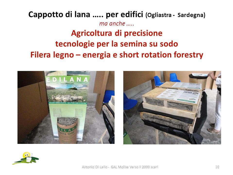 Cappotto di lana ….. per edifici (Ogliastra - Sardegna) ma anche ….. Agricoltura di precisione tecnologie per la semina su sodo Filera legno – energia