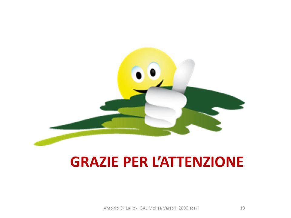 Grazie per lattenzione Antonio Di Lallo - GAL Molise Verso il 2000 scarl19 GRAZIE PER LATTENZIONE