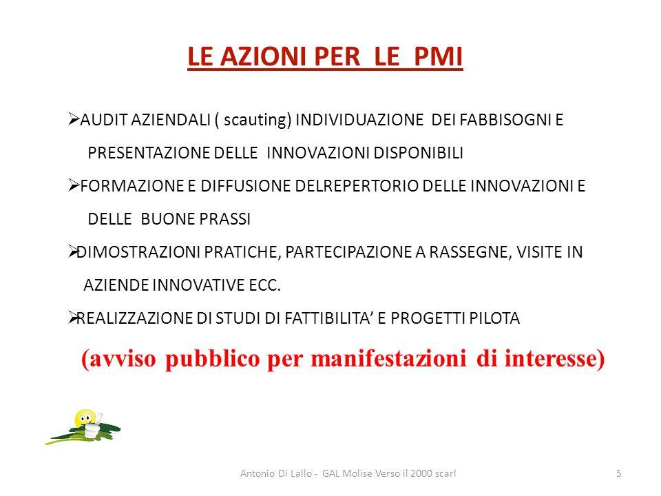 Antonio Di Lallo - GAL Molise Verso il 2000 scarl5 LE AZIONI PER LE PMI AUDIT AZIENDALI ( scauting) INDIVIDUAZIONE DEI FABBISOGNI E PRESENTAZIONE DELL