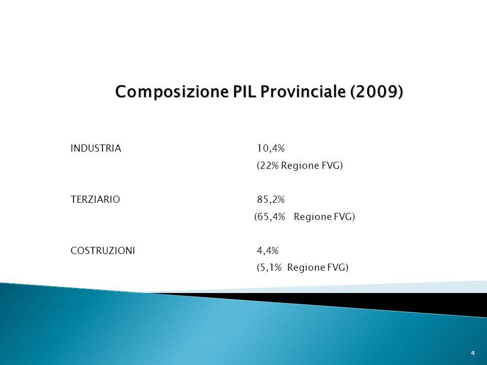 4 Composizione PIL Provinciale (2009) INDUSTRIA 10,4% (22% Regione FVG) TERZIARIO 85,2% (65,4% Regione FVG) COSTRUZIONI4,4% (5,1% Regione FVG)