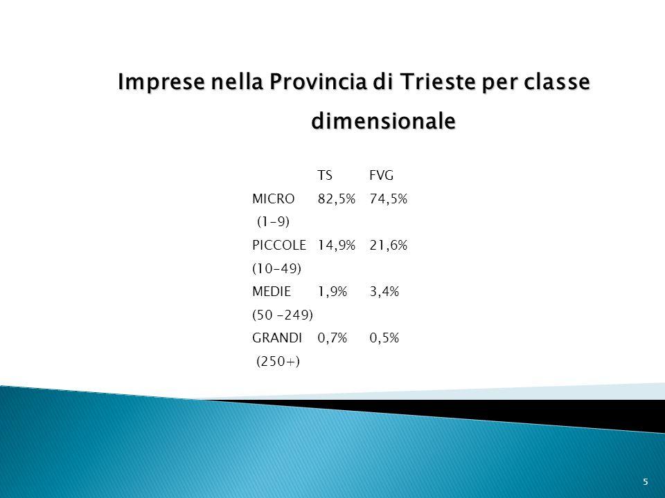 5 Imprese nella Provincia di Trieste per classe dimensionale TSFVG MICRO 82,5% 74,5% (1-9) PICCOLE14,9%21,6% (10-49) MEDIE1,9%3,4% (50 -249) GRANDI0,7