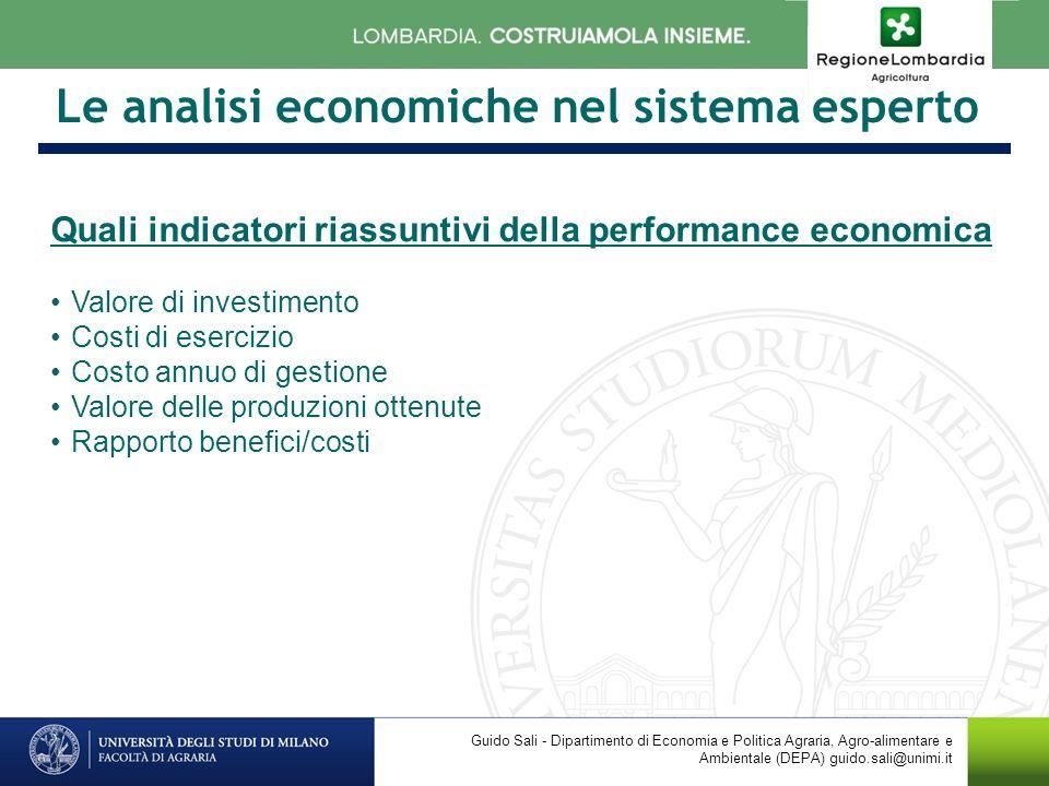 Le analisi economiche nel sistema esperto Quali indicatori riassuntivi della performance economica Valore di investimento Costi di esercizio Costo ann