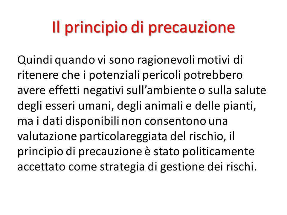 Il principio di precauzione Quindi quando vi sono ragionevoli motivi di ritenere che i potenziali pericoli potrebbero avere effetti negativi sullambie