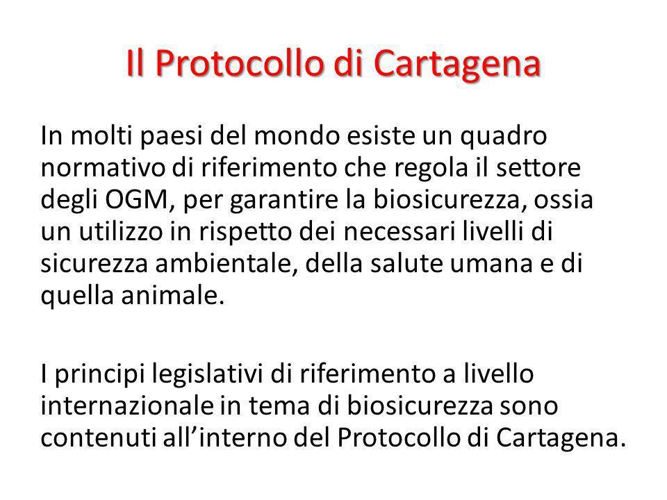 Il Protocollo di Cartagena In molti paesi del mondo esiste un quadro normativo di riferimento che regola il settore degli OGM, per garantire la biosic