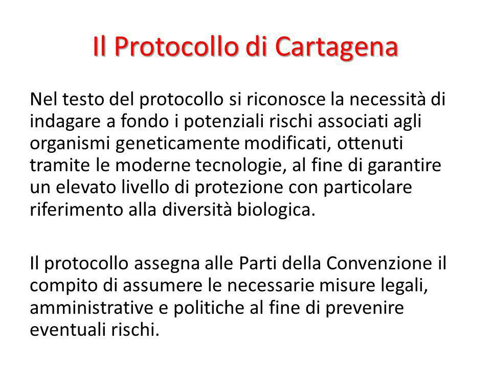 Il Protocollo di Cartagena Nel testo del protocollo si riconosce la necessità di indagare a fondo i potenziali rischi associati agli organismi genetic