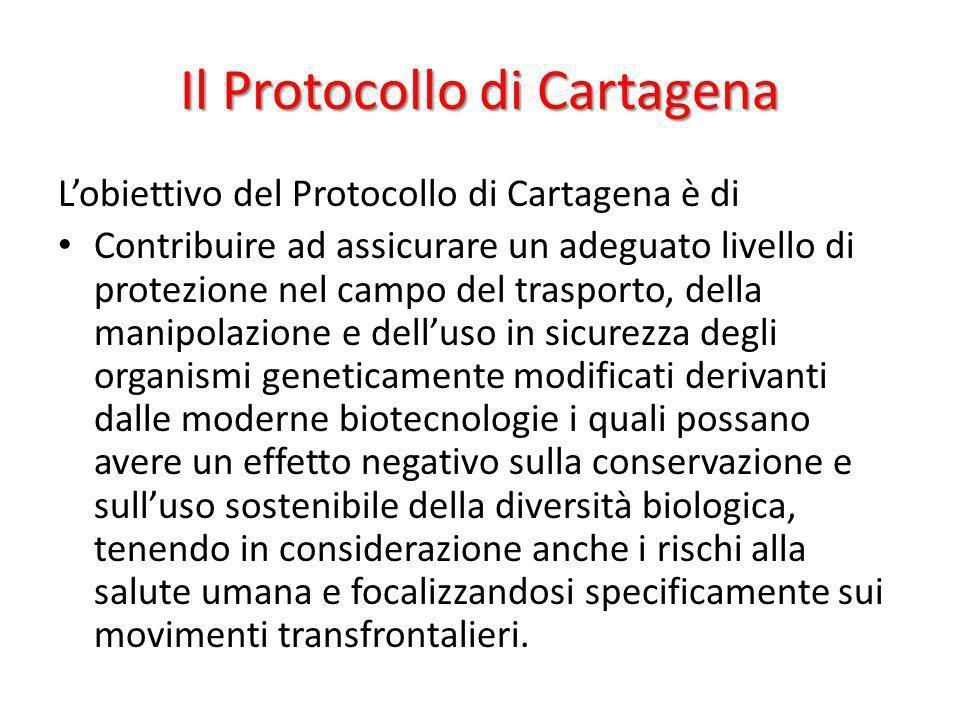 Il Protocollo di Cartagena Lobiettivo del Protocollo di Cartagena è di Contribuire ad assicurare un adeguato livello di protezione nel campo del trasp