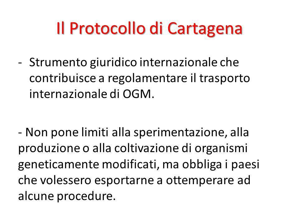 Il Protocollo di Cartagena -Strumento giuridico internazionale che contribuisce a regolamentare il trasporto internazionale di OGM. - Non pone limiti