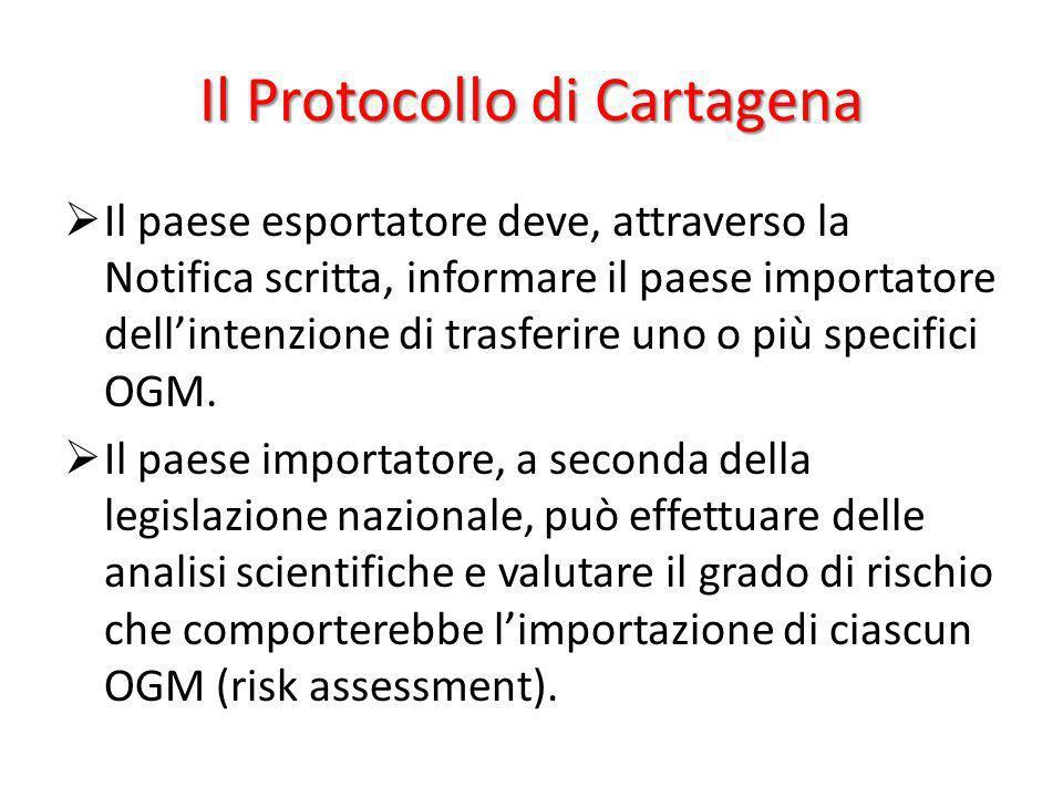 Il Protocollo di Cartagena Il paese esportatore deve, attraverso la Notifica scritta, informare il paese importatore dellintenzione di trasferire uno