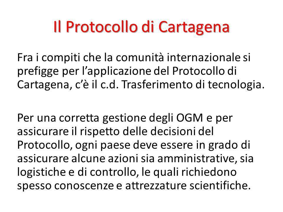 Il Protocollo di Cartagena Fra i compiti che la comunità internazionale si prefigge per lapplicazione del Protocollo di Cartagena, cè il c.d. Trasferi