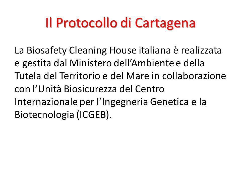 La Biosafety Cleaning House italiana è realizzata e gestita dal Ministero dellAmbiente e della Tutela del Territorio e del Mare in collaborazione con