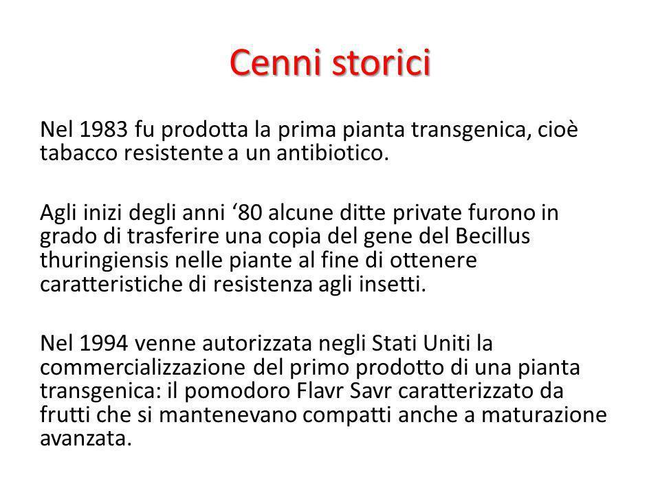 Cenni storici Nel 1983 fu prodotta la prima pianta transgenica, cioè tabacco resistente a un antibiotico. Agli inizi degli anni 80 alcune ditte privat