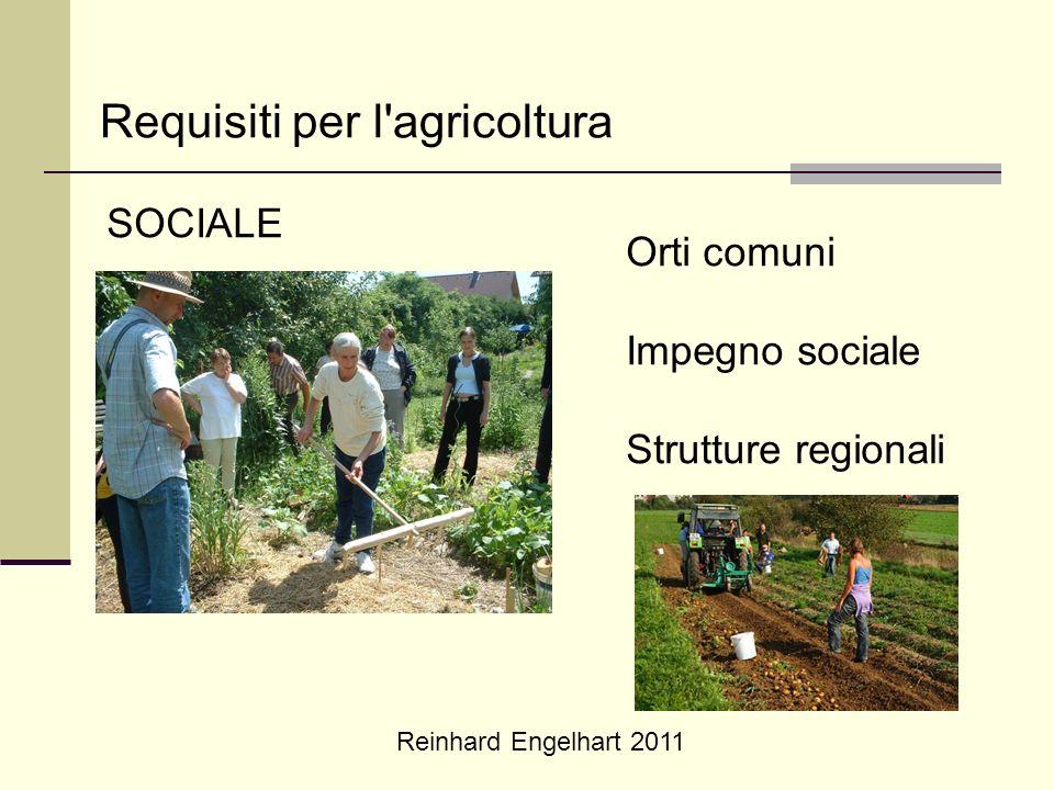 Reinhard Engelhart 2011 Requisiti per l'agricoltura SOCIALE Orti comuni Impegno sociale Strutture regionali