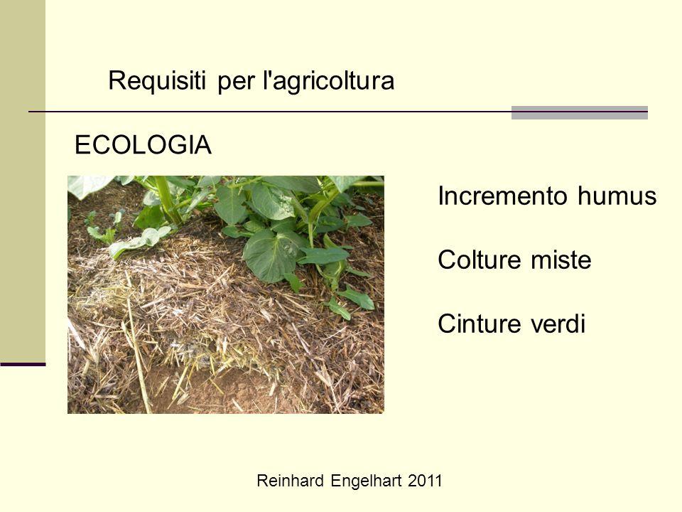 Reinhard Engelhart 2011 Requisiti per l'agricoltura ECOLOGIA Incremento humus Colture miste Cinture verdi