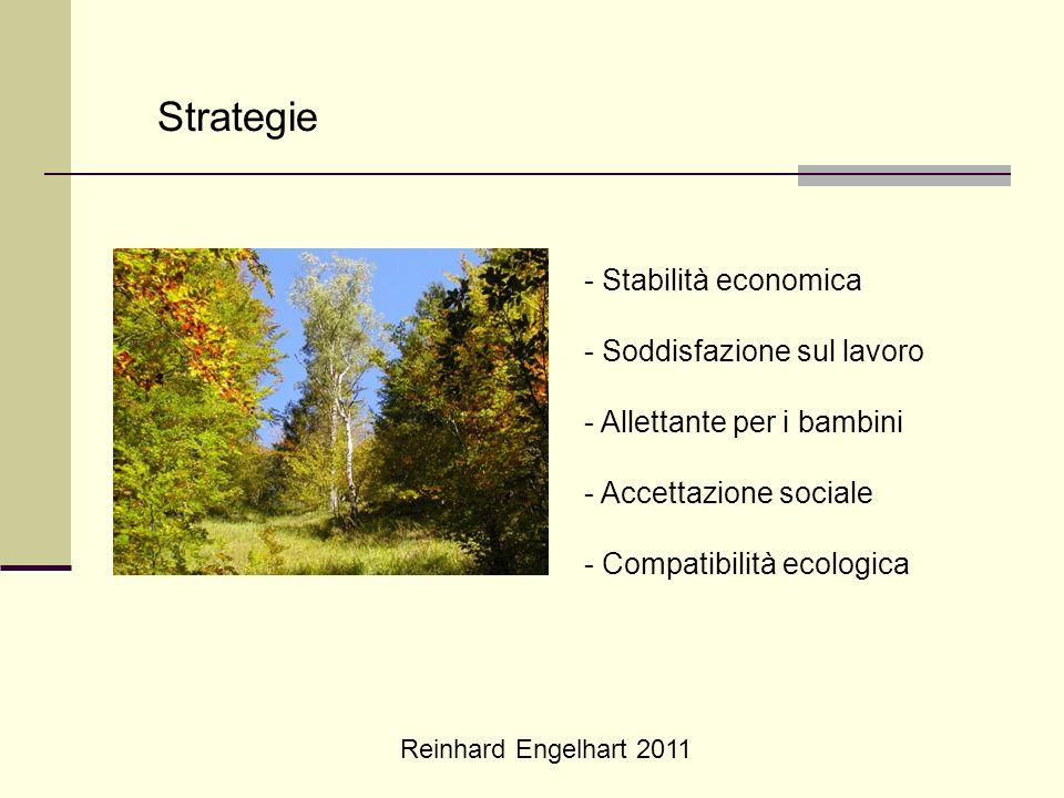 Reinhard Engelhart 2011 Strategie - Stabilità economica - Soddisfazione sul lavoro - Allettante per i bambini - Accettazione sociale - Compatibilità e