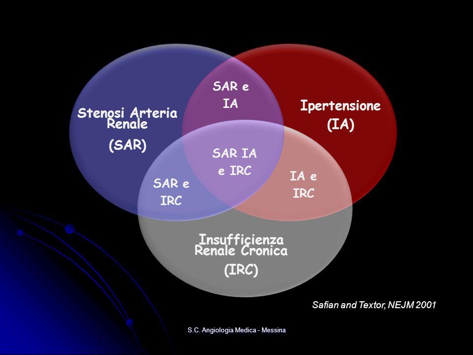 Stenosi Arteria Renale (SAR) Stenosi Arteria Renale (SAR) SAR e IA SAR e IA SAR IA e IRC SAR IA e IRC Ipertensione (IA) Ipertensione (IA) Insufficienza Renale Cronica (IRC) Insufficienza Renale Cronica (IRC) SAR e IRC SAR e IRC IA e IRC IA e IRC Safian and Textor, NEJM 2001 S.C.