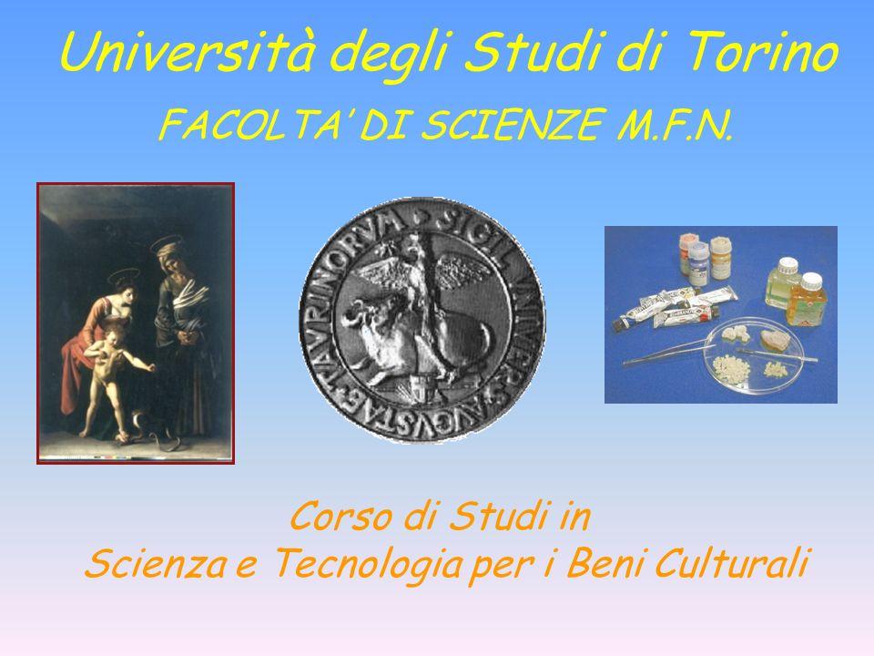Corso di Studi in Scienza e Tecnologia per i Beni Culturali Università degli Studi di Torino FACOLTA DI SCIENZE M.F.N.