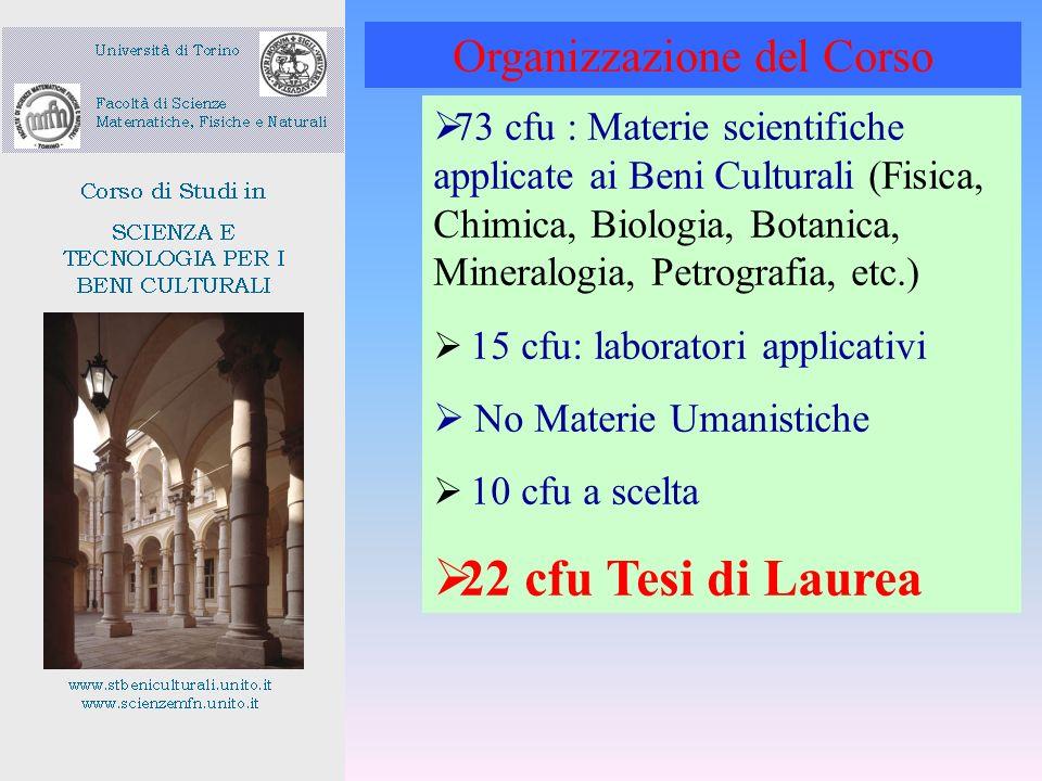 73 cfu : Materie scientifiche applicate ai Beni Culturali (Fisica, Chimica, Biologia, Botanica, Mineralogia, Petrografia, etc.) 15 cfu: laboratori app