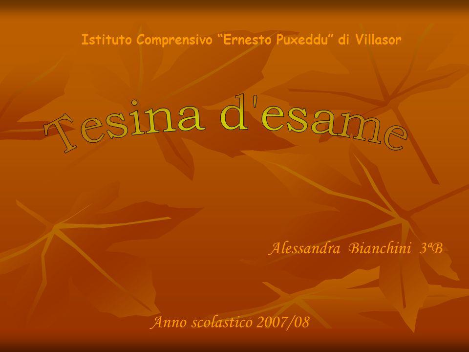 Istituto Comprensivo Ernesto Puxeddu di Villasor Alessandra Bianchini 3ªB Anno scolastico 2007/08