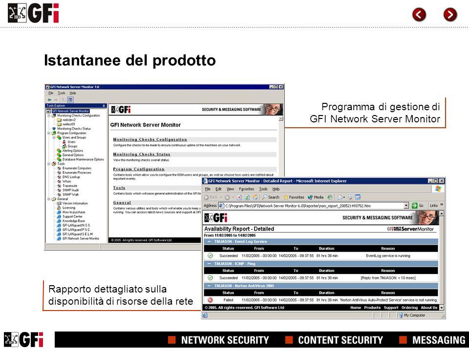 Rapporto dettagliato sulla disponibilità di risorse della rete Programma di gestione di GFI Network Server Monitor Istantanee del prodotto