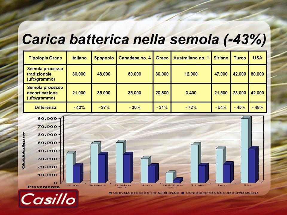 Carica batterica nella semola (-43%) Tipologia GranoItalianoSpagnoloCanadese no. 4GrecoAustraliano no. 1SirianoTurcoUSA Semola processo tradizionale (
