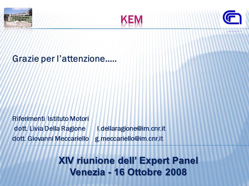 Grazie per lattenzione..… Riferimenti Istituto Motori dott. Livia Della Ragione l.dellaragione@im.cnr.it dott. Giovanni Meccariello g.meccariello@im.c