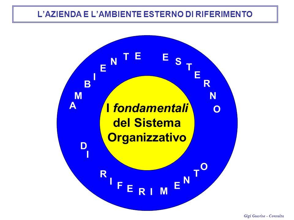 Gigi Guarise - Consulta A M B I E N T E E S T E R N O D I I R F E RI M E N T O LAZIENDA E LAMBIENTE ESTERNO DI RIFERIMENTO I fondamentali del Sistema Organizzativo