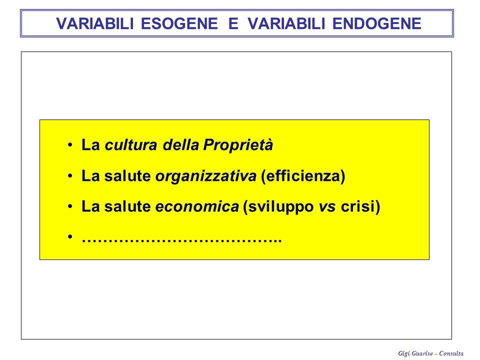 Gigi Guarise - Consulta VARIABILI ESOGENE E VARIABILI ENDOGENE La cultura della Proprietà La salute organizzativa (efficienza) La salute economica (sv