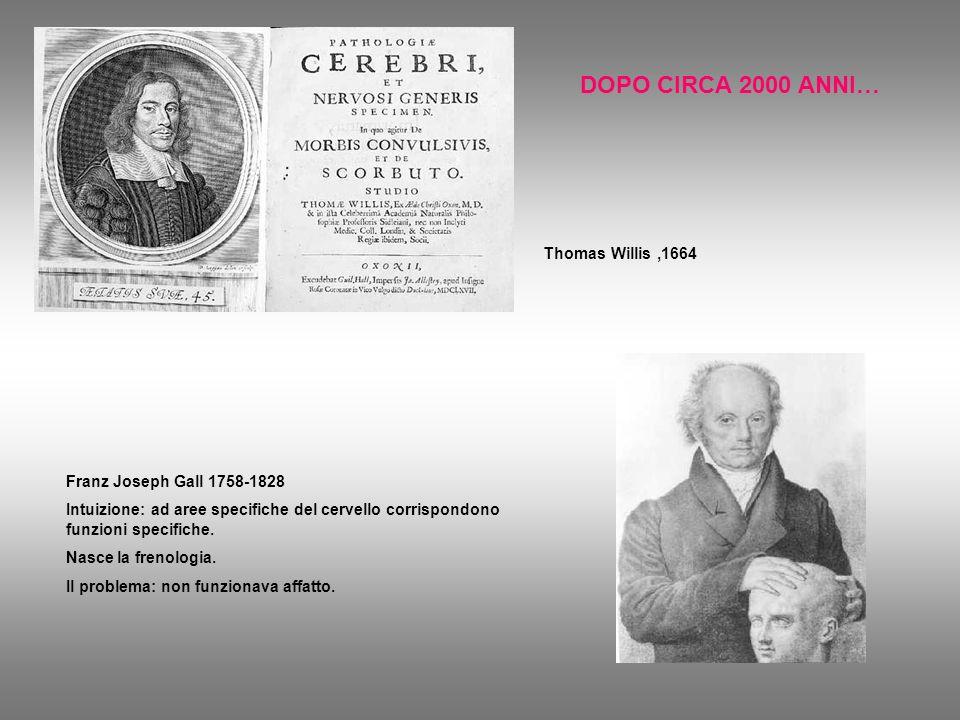 DOPO CIRCA 2000 ANNI… Thomas Willis,1664 Franz Joseph Gall 1758-1828 Intuizione: ad aree specifiche del cervello corrispondono funzioni specifiche. Na