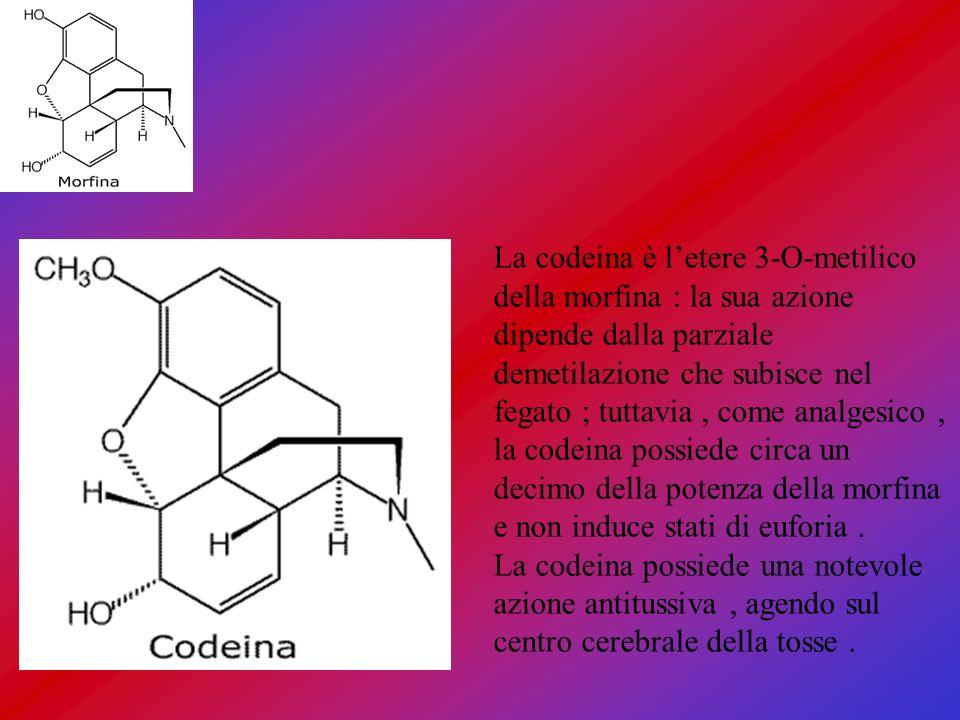 La codeina è letere 3-O-metilico della morfina : la sua azione dipende dalla parziale demetilazione che subisce nel fegato ; tuttavia, come analgesico
