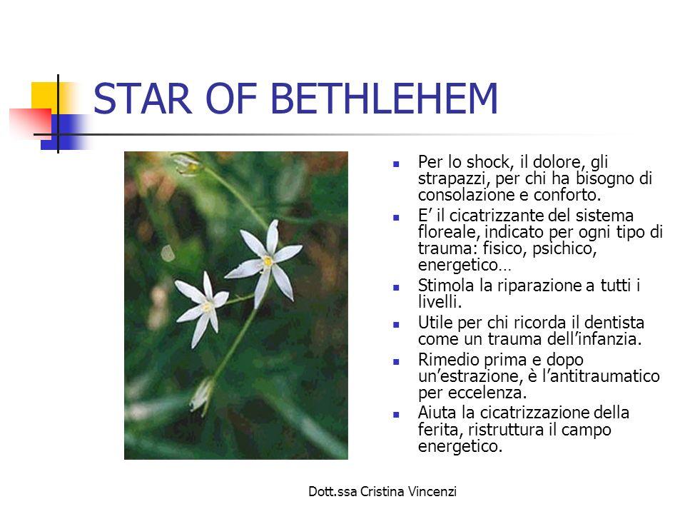 Dott.ssa Cristina Vincenzi STAR OF BETHLEHEM Per lo shock, il dolore, gli strapazzi, per chi ha bisogno di consolazione e conforto. E il cicatrizzante
