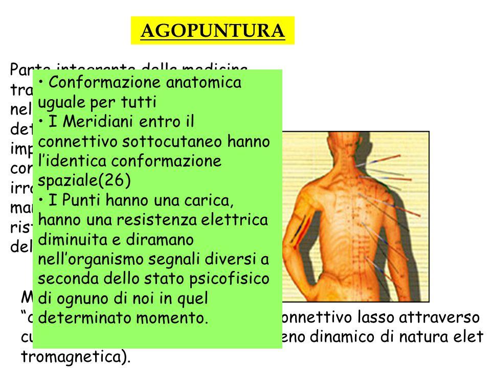 AGOPUNTURA Parte integrante della medicina tradizionale cinese. Consiste nellinfissione di sottili aghi in determinati punti corporei. Si impiegano cu
