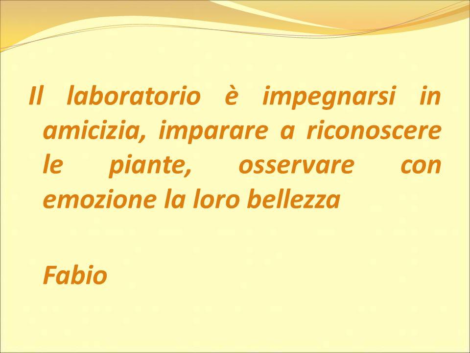 Il laboratorio è impegnarsi in amicizia, imparare a riconoscere le piante, osservare con emozione la loro bellezza Fabio