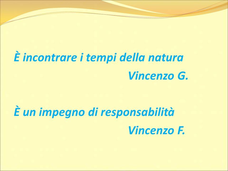 È incontrare i tempi della natura Vincenzo G. È un impegno di responsabilità Vincenzo F.
