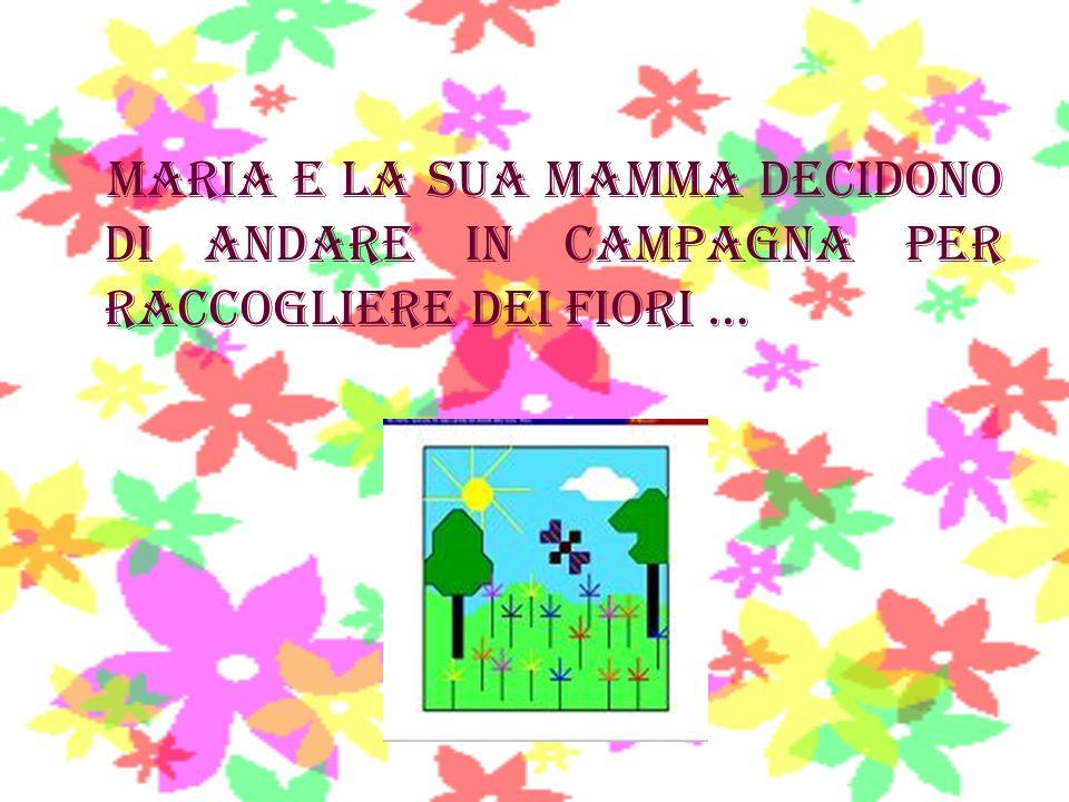 maria e la sua mamma decidono di andare in campagna per raccogliere dei fiori …