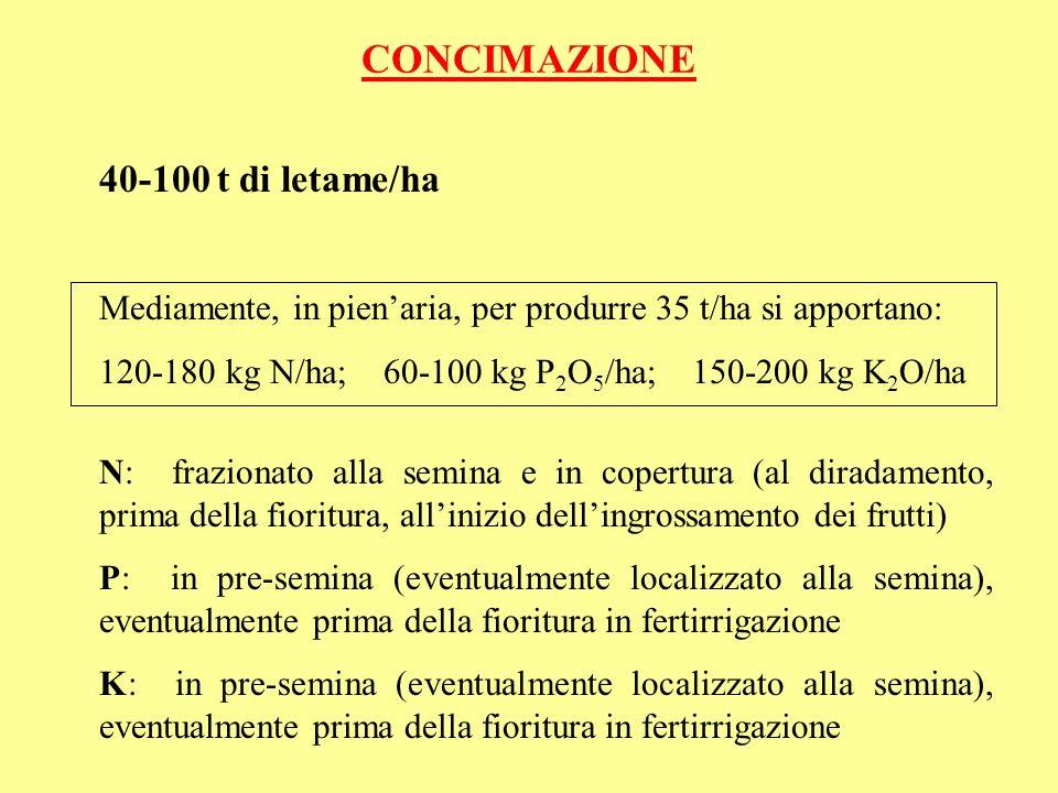 CONCIMAZIONE 40-100 t di letame/ha Mediamente, in pienaria, per produrre 35 t/ha si apportano: 120-180 kg N/ha; 60-100 kg P 2 O 5 /ha; 150-200 kg K 2