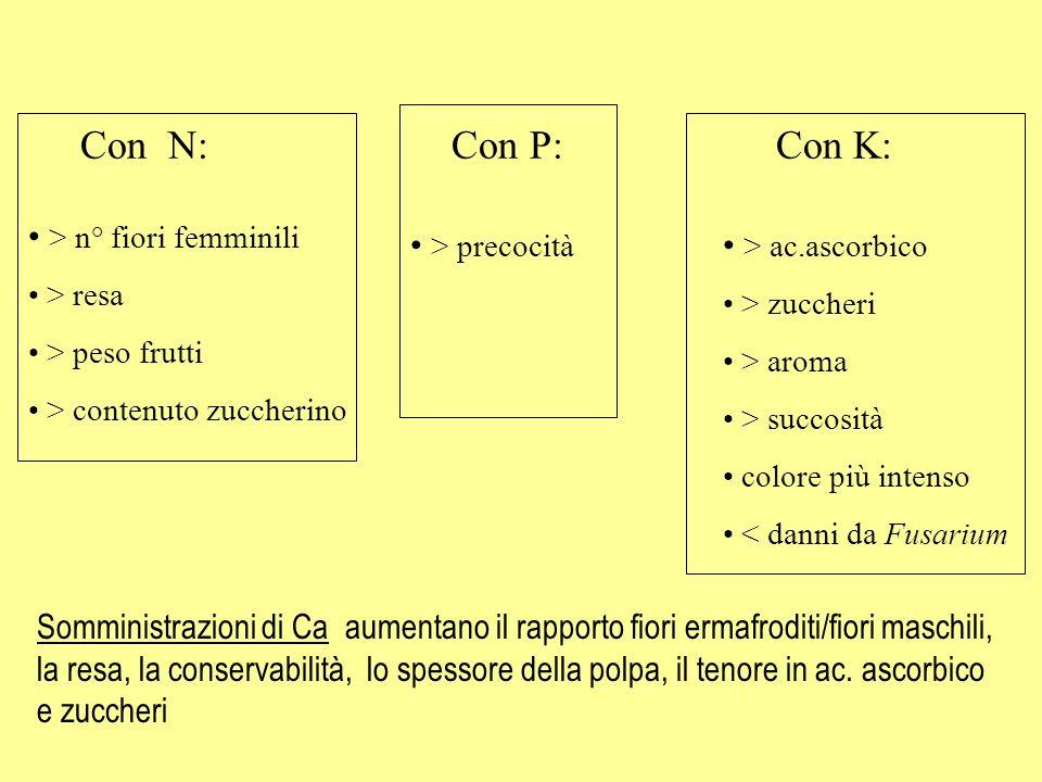 Con N: Con P: Con K: > n° fiori femminili > resa > peso frutti > contenuto zuccherino > precocità > ac.ascorbico > zuccheri > aroma > succosità colore