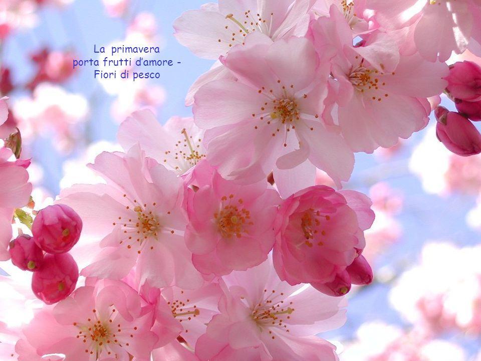 La primavera porta frutti damore - Fiori di pesco