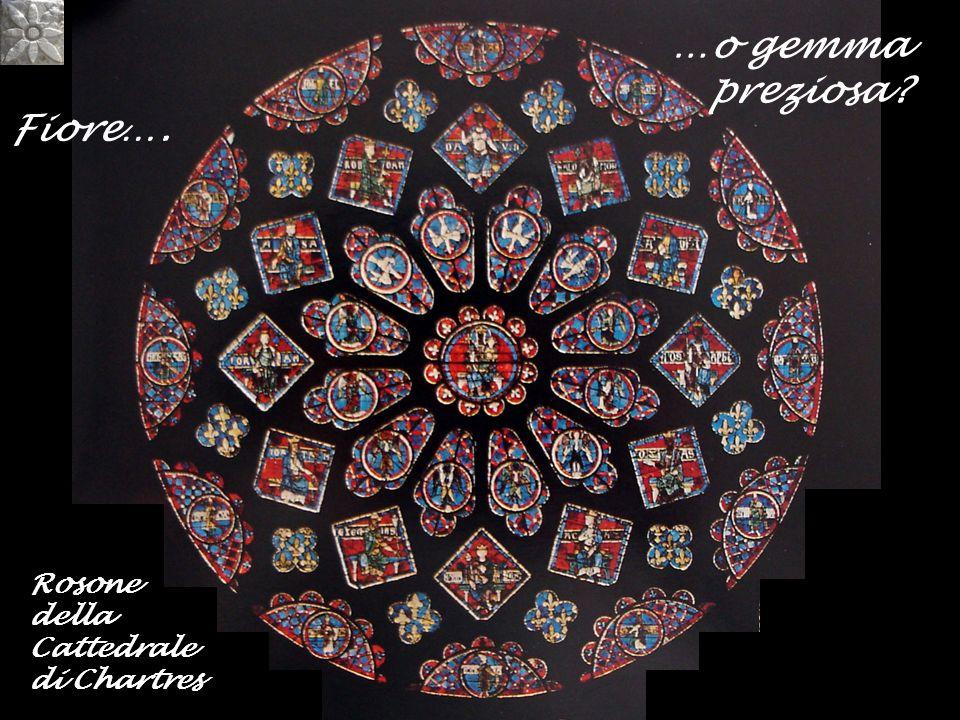 Fiore…. …o gemma preziosa? Rosone della Cattedrale di Chartres