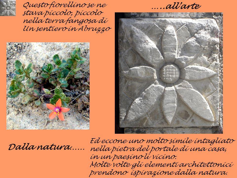 Dalla natura…… Ed eccone uno molto simile intagliato nella pietra del portale di una casa, in un paesino lì vicino. Molte volte gli elementi architett