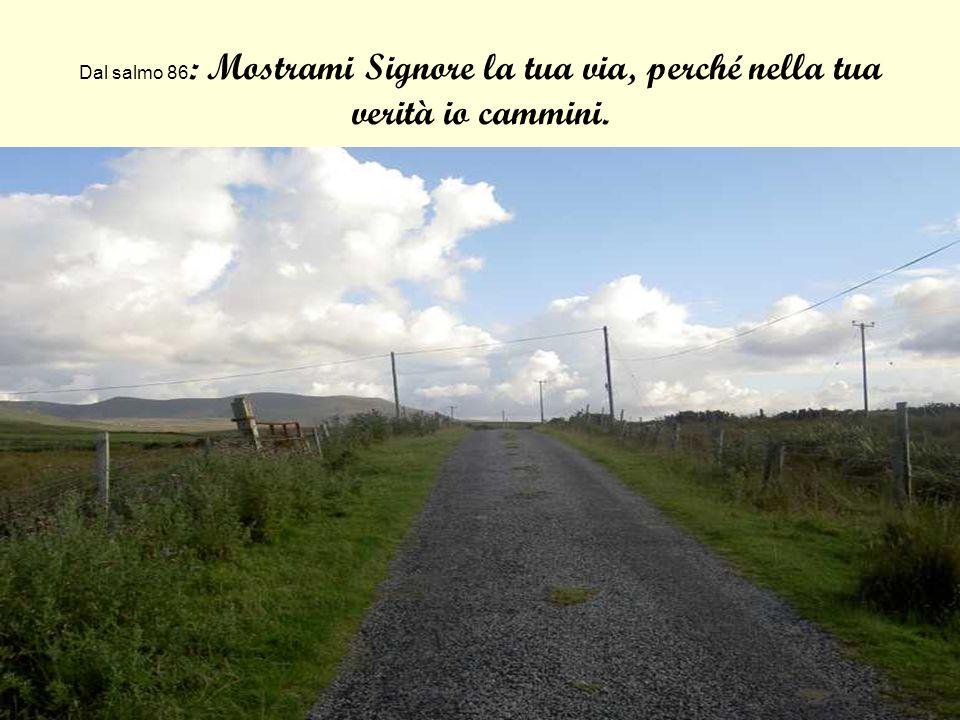 Dal salmo 86 : Mostrami Signore la tua via, perché nella tua verità io cammini.