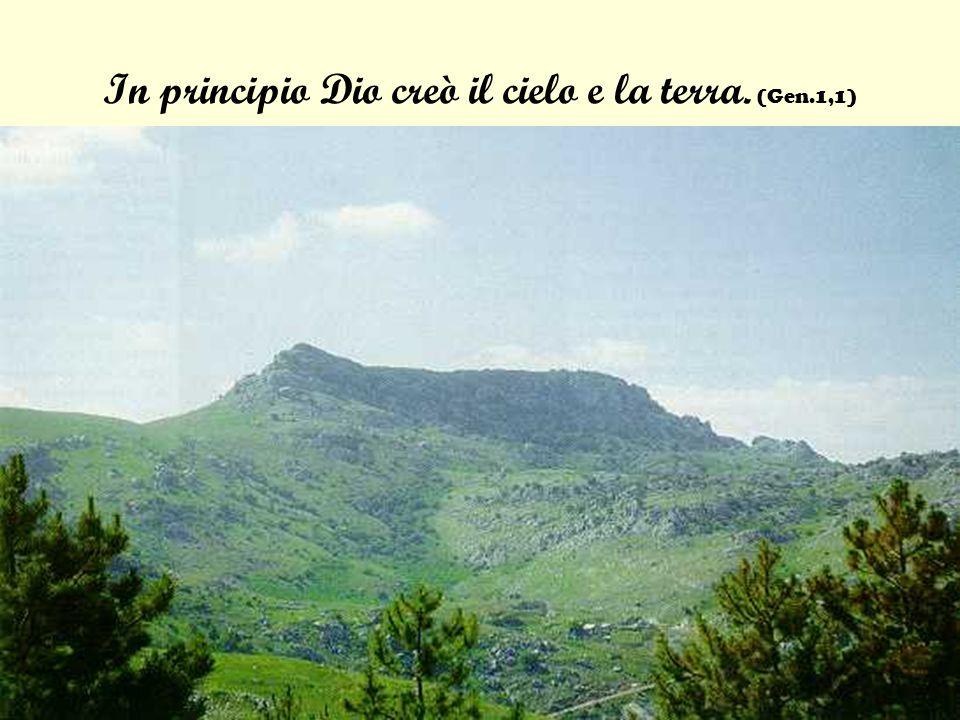 Dal salmo 121: Alzo gli occhi verso i monti: da dove mi verrà laiuto.