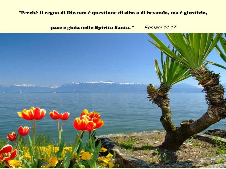 Perché il regno di Dio non è questione di cibo o di bevanda, ma è giustizia, pace e gioia nello Spirito Santo.