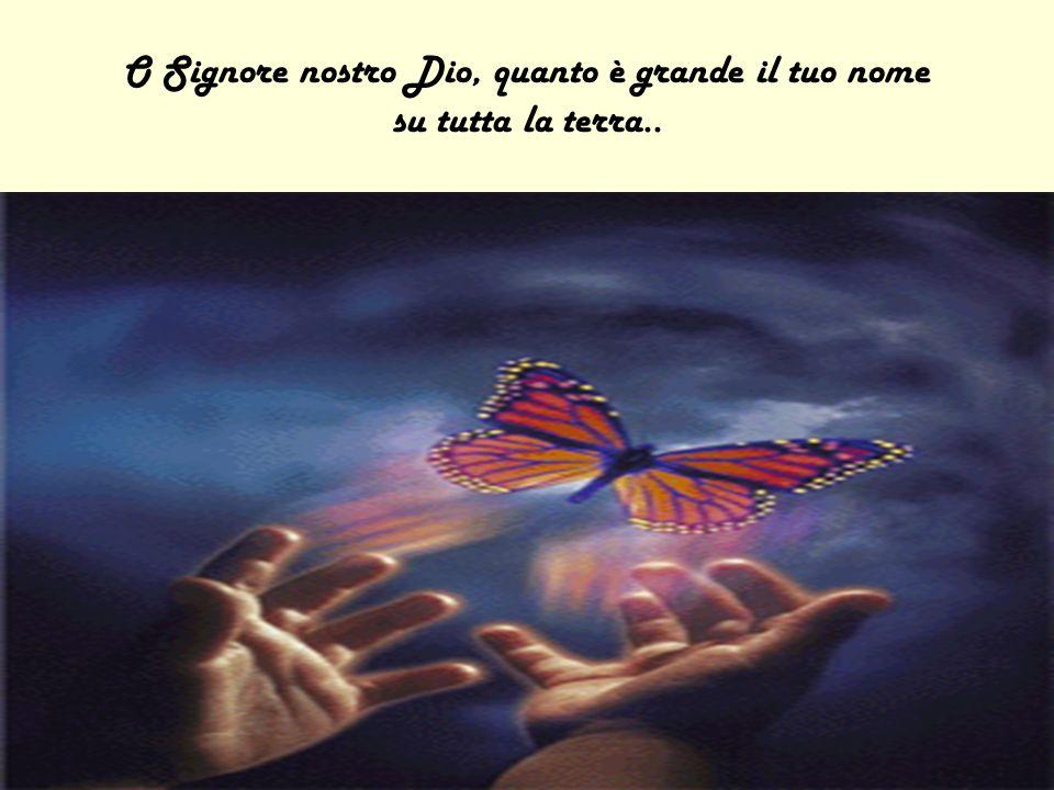 O Signore nostro Dio, quanto è grande il tuo nome su tutta la terra..