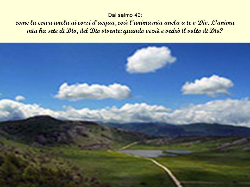 Dal salmo 42: come la cerva anela ai corsi dacqua, così lanima mia anela a te o Dio. Lanima mia ha sete di Dio, del Dio vivente: quando verrò e vedrò