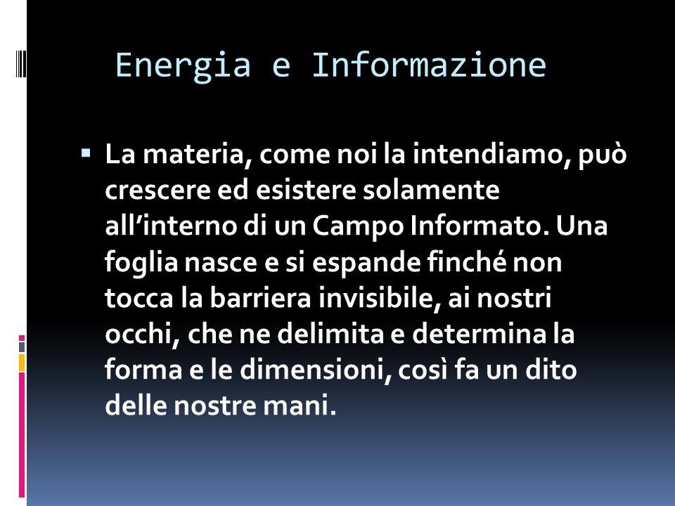 Energia e Informazione La materia, come noi la intendiamo, può crescere ed esistere solamente allinterno di un Campo Informato.