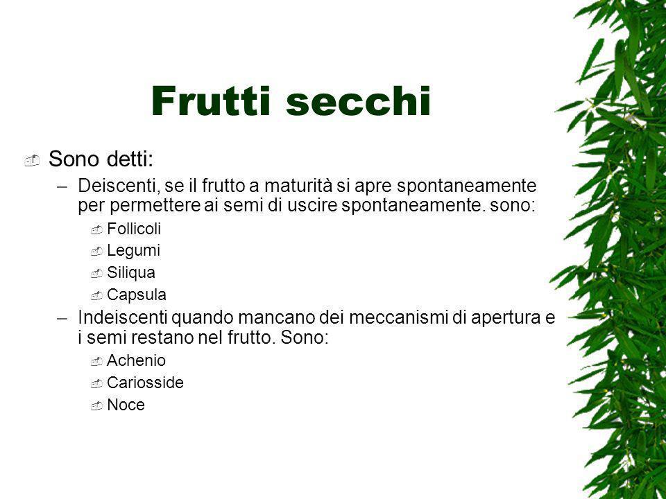 Frutti secchi Sono detti: –Deiscenti, se il frutto a maturità si apre spontaneamente per permettere ai semi di uscire spontaneamente.